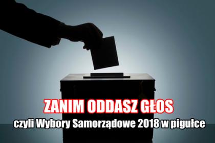 Wybory Samorządowe. Jak będą wyglądać karty do głosowania? Jak skreślać?