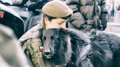 Psy będą służyć w 13. Śląskiej Brygadzie Obrony Terytorialnej.